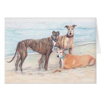 3 Greyhound on the Beach Dog Art Note Card