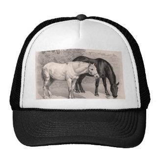 3 Horses, B&W Mesh Hats