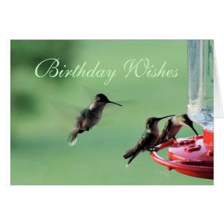 3 Hummingbirds at feeder- customise any occasion Card