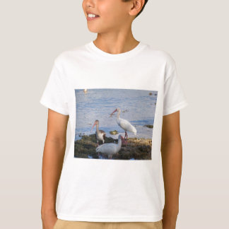 3 Ibis on the shore of Florida Bay T-Shirt