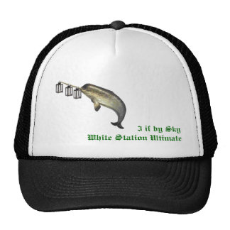 3 if by sky  White Station Ultimate Cap