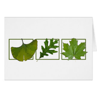 3 leaves card