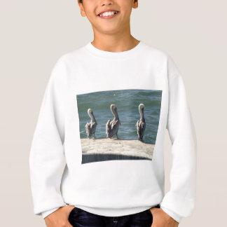3 Pelicans Sweatshirt