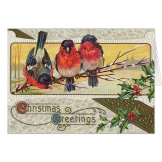 3 robins greeting card