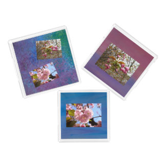 3 Tray - Cherry Blossom Photo Set