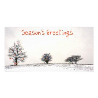 3 white trees  xmas personalized photo card