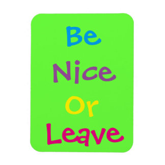 "3""x4"" Be Nice Photo Magnet"
