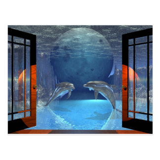 3d art dolphin together postcard
