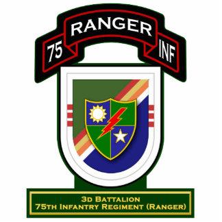 3d Bn, 75th Infantry Regiment - Rangers Standing Photo Sculpture