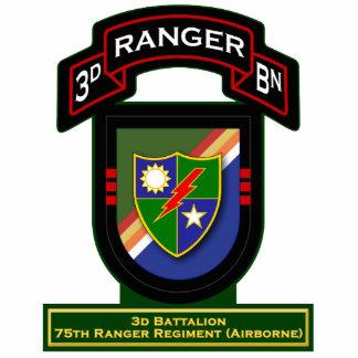 3d Bn, 75th Ranger Regiment - Airborne Standing Photo Sculpture