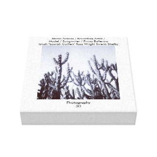 3D Cacti in Black and White Stretched Canvas Print