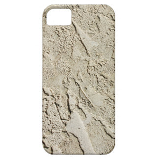 3D Cement Wall iPhone 5 Cases