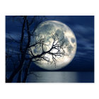 3D Landscape Background With Moon Over The Sea Postcard