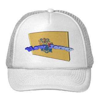 3D New Jersey State Flag Trucker Hat