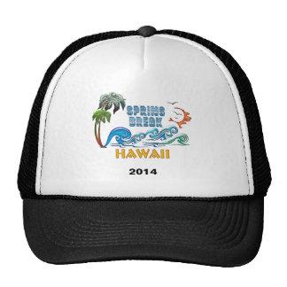3D Palms Waves Sunset Spring Break HAWAII Mesh Hat