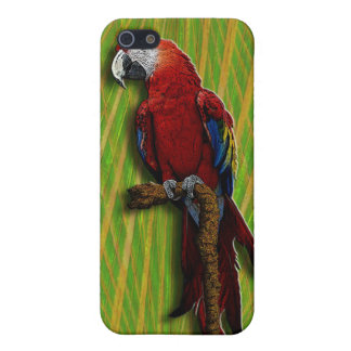 3D Parrot red iPhone Cover For iPhone 5/5S