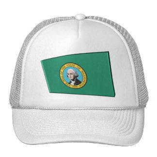 3D Washington State Flag Cap