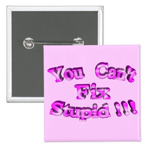 3D You Can't Fix Stupid !!! Pin