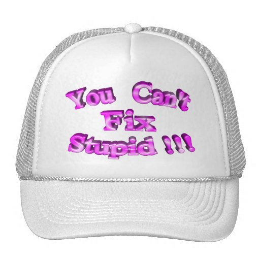 3D You Can't Fix Stupid !!! Mesh Hat