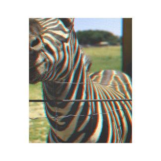 3d Zebra Canvas Print