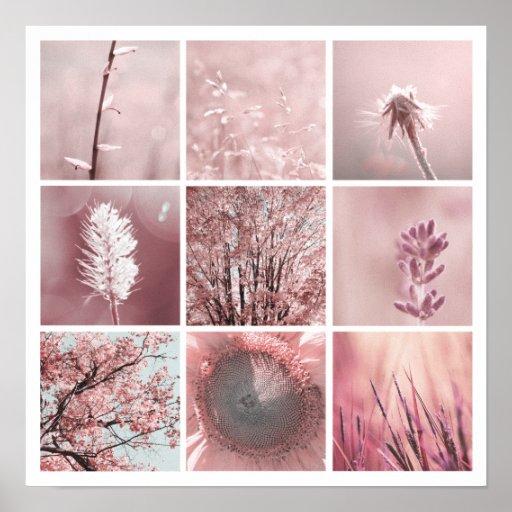 3x3 pink photos Print