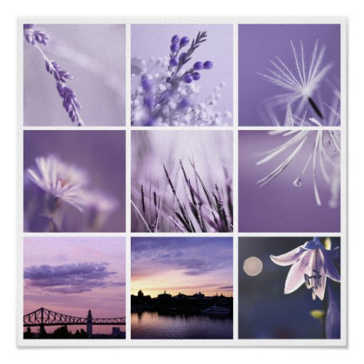3x3 purple nature photos Print