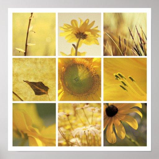 3x3 yellow nature photography Print