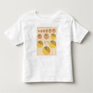 42 Population, elements 1790-1900 Toddler T-Shirt