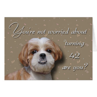 42nd Birthday Dog Card