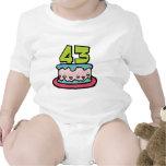 43 Year Old Birthday Cake Tshirts
