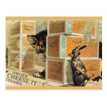 46 Pets Postcards
