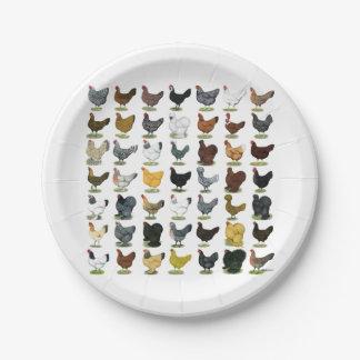 49 Chicken Hens Paper Plate