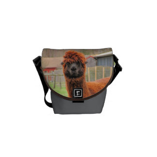4 Alpacas ~ Mini Messenger bag