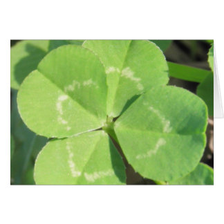 4 Leaf Clover Good Luck Charm Greeting Card