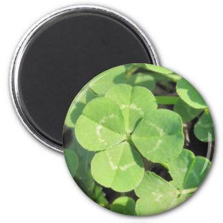 4 Leaf Clover Good Luck Charm Refrigerator Magnets
