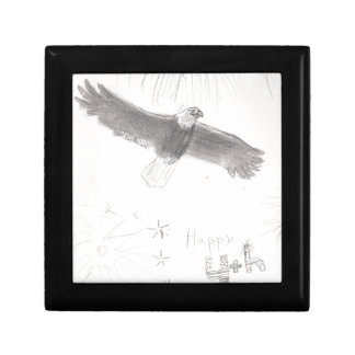 4'th of july fireworks bald eagle drawing eliana.j gift box