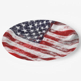 4th of July Picnic Paper Plates, American Flag 9 Inch Paper Plate