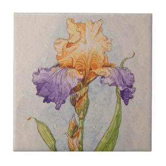 5310 Purple and Gold Iris Ceramic Tile