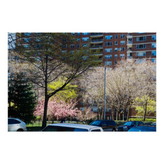 59th Street Central Park South Poster