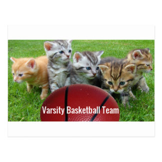 5 Cats Form a Basketball Team Postcard