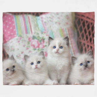 5 KITTENS FLEECE BLANKET