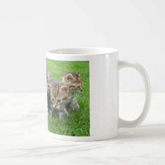 5 Kittens Mug