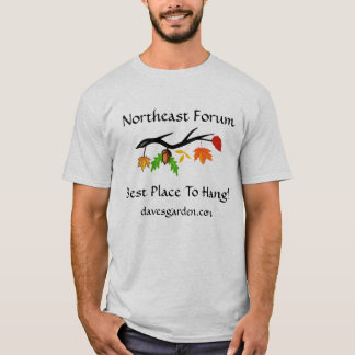 #5  Northeast Forum: Best Place - brighter leaves T-Shirt