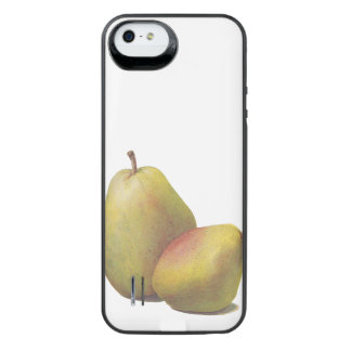 5 vintage pears illustrated iPhone SE/5/5s battery case