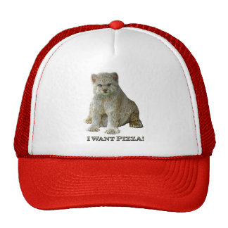 600 lb Cat Pizza - Trucker Hat