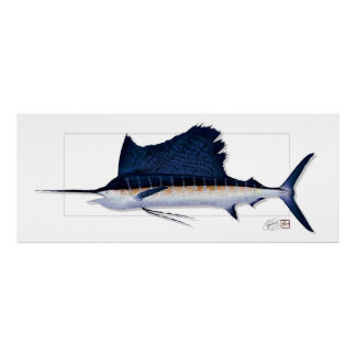 "60"" WIDE Pacific Sailfish Textureprint ! Poster"