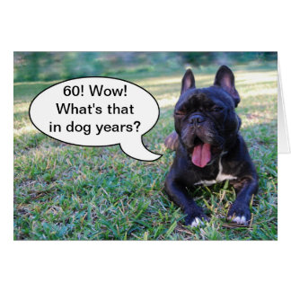 60th Birthday Dog Years French Bulldog Card