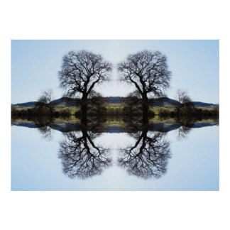 62914 Fractal Trees Poster