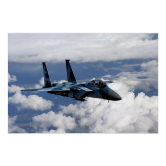 65th Aggressor Squadron F-15 Eagle Poster