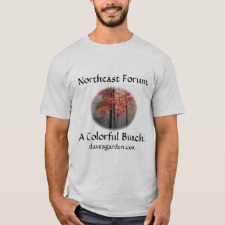 #6 Northeast forum: pixie's pic - colorful bunch T-Shirt